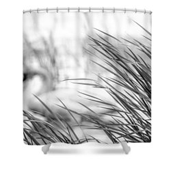 Shower Curtain featuring the photograph Behind The Grass by Steven Santamour