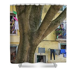 Behind The Tree Shower Curtain by Patricia Schaefer