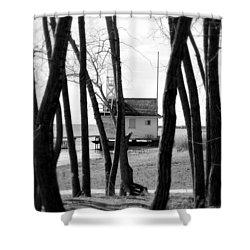 Shower Curtain featuring the photograph Behind The Trees by Valentino Visentini