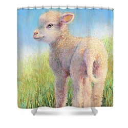 Behold The Lamb Shower Curtain