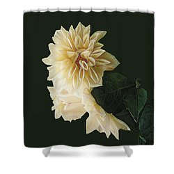 Beige Bold And Beautiful Shower Curtain by RC DeWinter