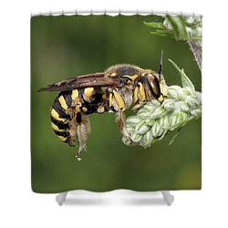 Being Beautiful Shower Curtain by Doris Potter