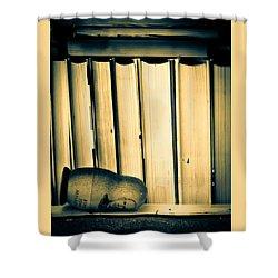 Being John Malkovich Shower Curtain by Bob Orsillo