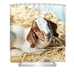 Being New Shower Curtain
