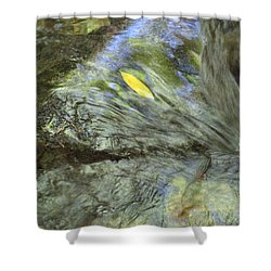 Shower Curtain featuring the photograph Being Still by Marie Neder