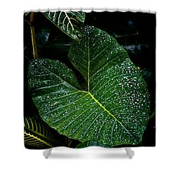 Bejeweled Leaf Shower Curtain by Christopher Holmes