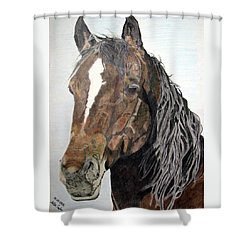 Bela Shower Curtain by Melita Safran