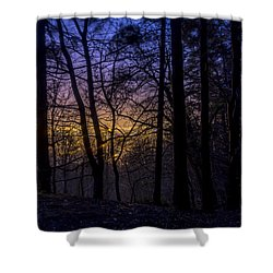 Belfast Through The Trees Part 1 Shower Curtain