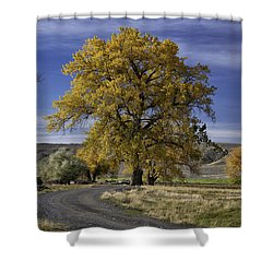 Belfry Fall Landscape 5 Shower Curtain