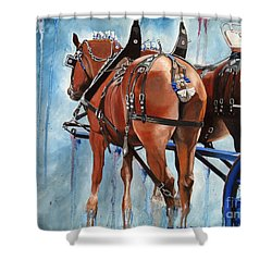 Belgian Blues Shower Curtain