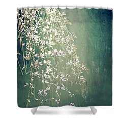 Shower Curtain featuring the photograph Believe In Dreams by Linda Lees
