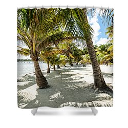 Belizean Palms Shower Curtain