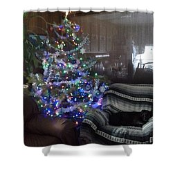 Bella Christmas 2013 Shower Curtain by Jewel Hengen