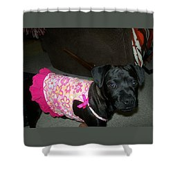 Bella In Swimsuit Shower Curtain by Jewel Hengen