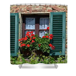 Bella Italian Window  Shower Curtain