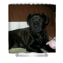 Bella Shower Curtain by Jewel Hengen