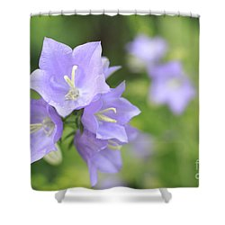 Bellflower Shower Curtain