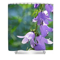 Bellfower Fairy Dresses  Shower Curtain by Lyle Crump