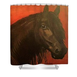 Belmonte Shower Curtain