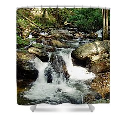 Below Anna Ruby Falls Shower Curtain