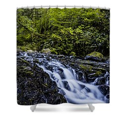 Below Pony Tail Falls Shower Curtain