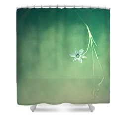 Below Summer  Shower Curtain