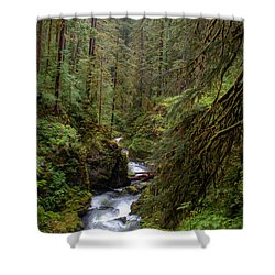 Below The Falls Shower Curtain