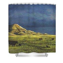 Belt Butte Spring Shower Curtain