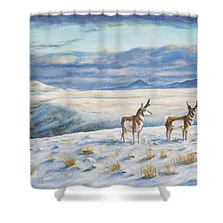 Belt Butte Winter Shower Curtain
