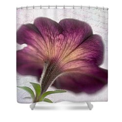 Shower Curtain featuring the photograph Beneath A Dreamy Petunia by David and Carol Kelly