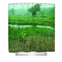 Beneath The Clouds Shower Curtain