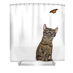 Bengal Cat With Butterfly Shower Curtain