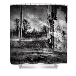 Benjamin Nye Window Shower Curtain