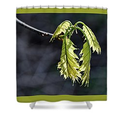 Bent On Growing - Shower Curtain
