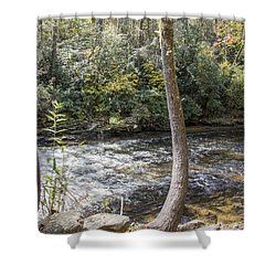 Bent Tree River Shower Curtain by Ricky Dean