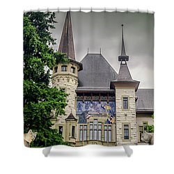 Berne Historical Museum Shower Curtain