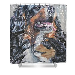 Bernese Mountain Dog With Pup Shower Curtain by Lee Ann Shepard