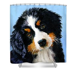 Bernese Mountain Puppy Shower Curtain by Alice Leggett