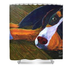 Shower Curtain featuring the painting Bernese Mtn Dog On The Deck by Donald J Ryker III