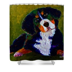 Shower Curtain featuring the painting Bernese Mtn Dog Puppy by Donald J Ryker III