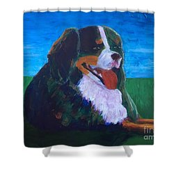 Shower Curtain featuring the painting Bernese Mtn Dog Resting On The Grass by Donald J Ryker III