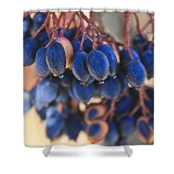 Berries Blue Too Shower Curtain