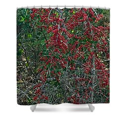Berries In Styx Shower Curtain