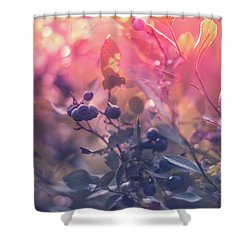 Berries In The Sun Shower Curtain