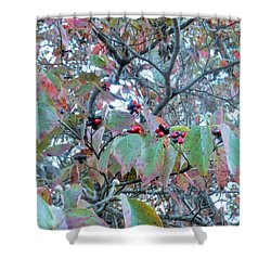 Shower Curtain featuring the photograph Berries by Kay Gilley