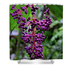 Berries Or Flowers Shower Curtain by Mini Arora