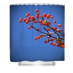 Berry Branch Shower Curtain