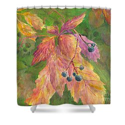 Berry Challenge Shower Curtain