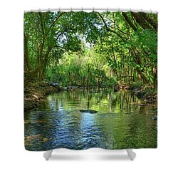 Berry Springs Shower Curtain by Racheal Christian