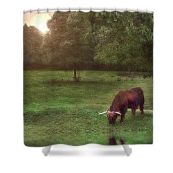 Shower Curtain featuring the photograph Beside Still Waters by Mark Fuller